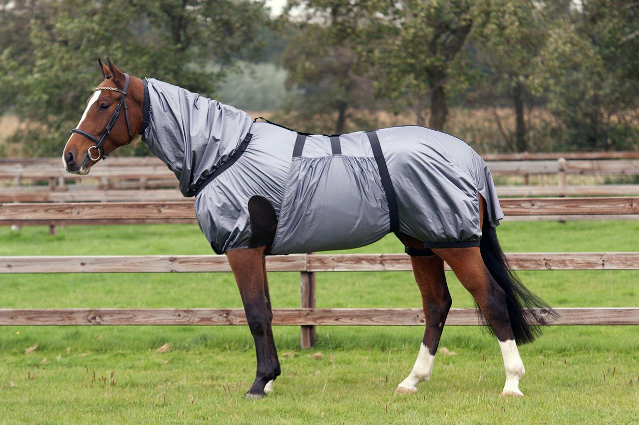 eksemtäcke till häst
