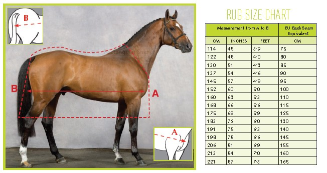 200 g täcke häst