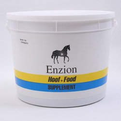 Enzion