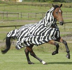 Bucas Buzz off zebra full neck, flugtäcke