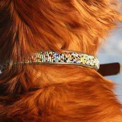 Hundhalsband halvstryp - Masaj