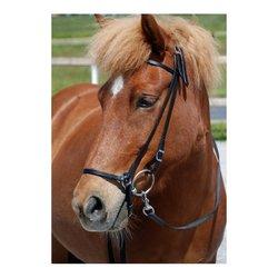 Nordic Horse Smalskuren Remontnosgrimma