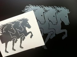 Trippel Front Islandshäst Stor