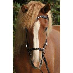Nordic Horse Huvudlag med blingstenar