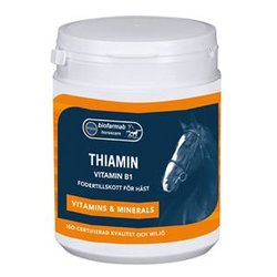 Eclipse Biofarmab Thiamin